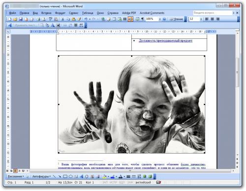 Как вставить фотографию в MS Word 2003