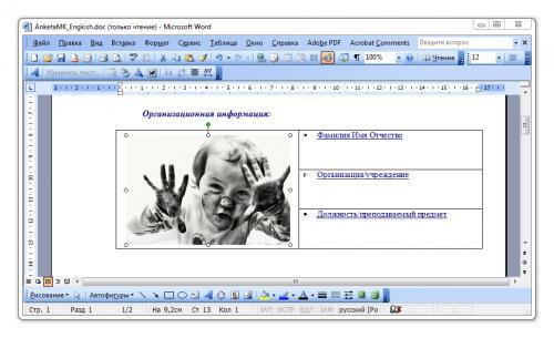adminu-doc-ms-word-size