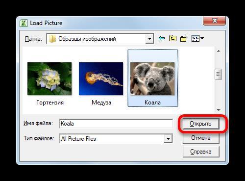 Открытие изображения в Microsoft Excel