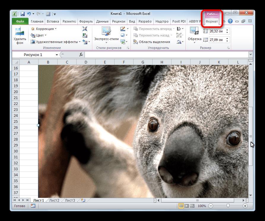 Вкладка работа с изображениями в Microsoft Excel
