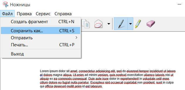 """Нажмите """"Сохранить как..."""" или сочетание клавиш CTRL+S для сохранения"""