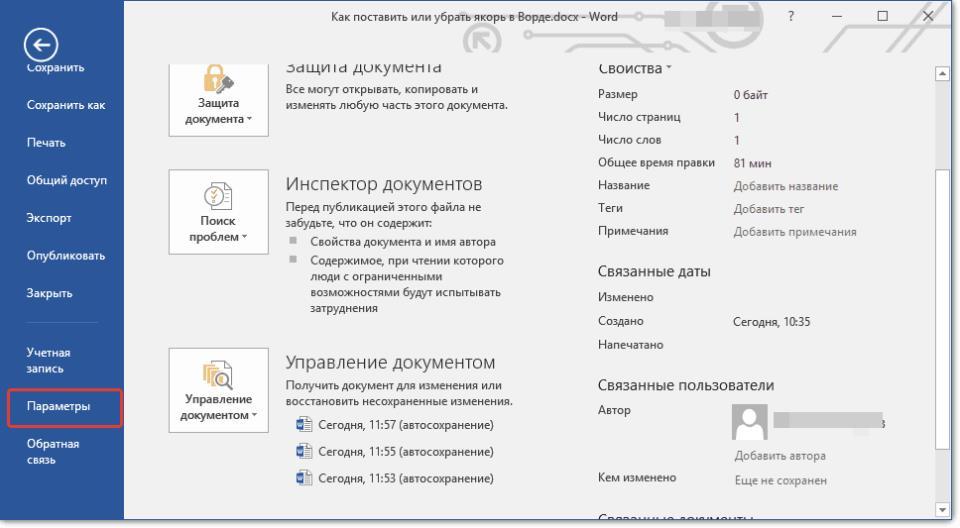 knopka-parametryi-v-word